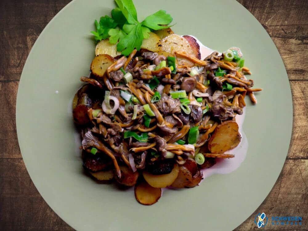 Pfifferlingspfanne mit Bratkartoffeln fertig angerichtet